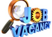 Part time work available in mnc company earn up to