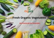 Buy organic vegetables online|vegetables home del