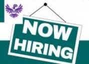 Direct company hiring digital marketing online wrk
