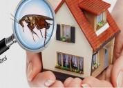 Pest control services in delhi ncr