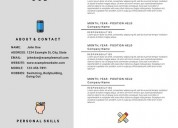 professional visual resume writing services