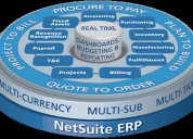 Multiply business profits with netsuite solutions