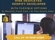 Top shopify development company india - thinktanke