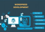 Looking for a wordpress web development company