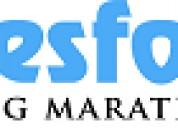 Best salesforce training institute  in marathahall