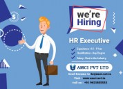 Hiring hr executive