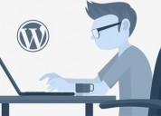 Wordpress experts developers