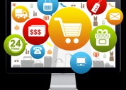 Get ecommerce software to steer growth