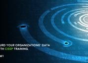 Cissp live online training at mercury solution