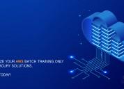Aws associate live virtual training