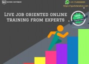Online training and course