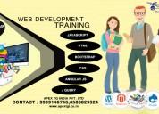 web development training in noida | apex t.g india