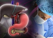 Liver transplantation in india from best surgeon