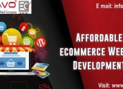 Affordable ecommerce website development company