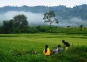 Eco tourism - the future of tourism
