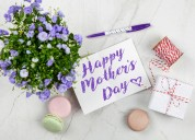 Best mothers day gift ideas | green plants