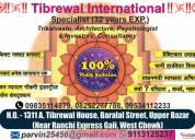 Tibrewal international best astrologer in ranchi