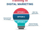 What is learn digital marketing online course?