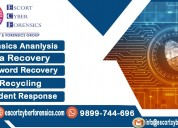 Forensic service provider in india