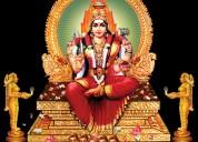 Best astrologer in rr nagar