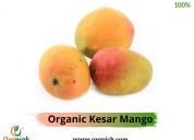 Buy organic kesar mango online