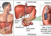 Gastroscopy colonoscopy ercp stone clinic in jaipu