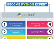 Do you need the python industrial training?