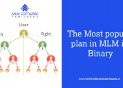 The most popular plan in mlm is binary