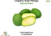 Buy organic raw mangoes online | kaccha aam