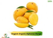Buy orgpick's organic alphonso mango online
