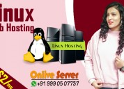Linux web hosting with high bandwidth