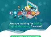 web development services in nagpur