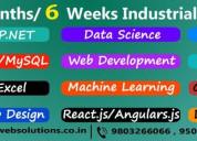 Computer training institute - online classes avail