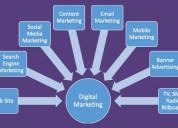 Online digital marketing training course institute