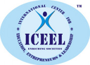 International business management course by iceel