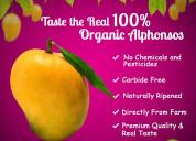Buy 100% organic alphonso mangoes