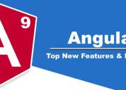 Online angular 9 training course