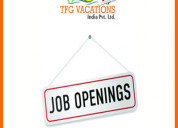 Work from home internet marketing job offered