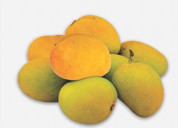 Buy devgad mango online at alphonsomangoes