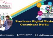 Freelance online digital marketing consultant