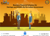 Government introduce several schemes for msmes