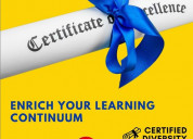Certified diversity professional programme (cdp)