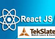 Online reactjs course training at tekslate