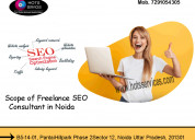 The scope of freelance seo consultant in noida