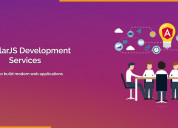 Angular js developer in india