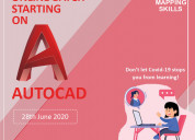Online autocad summer training