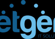 Netgen it solutions pvt ltd