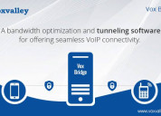 Managed voip tunneling software for small business
