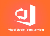 Visual studio team services training online