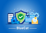 Bluecat certification course online